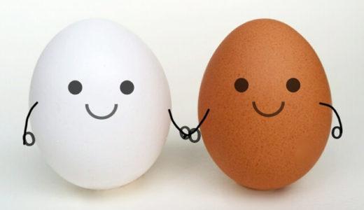 マツコの知らないゆで卵の世界、小林さん直伝究極のゆで卵の作り方を紹介